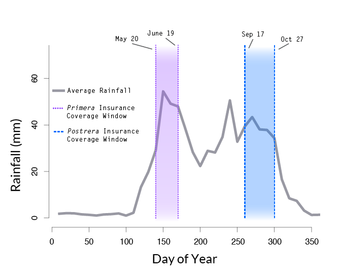 """A line graph illustrates the amount of rainfall (y-axis in millimeters) over the course of days of the year (x-axis, day of the year 0-350 marked on the axis). A purple band identifies the period from May 20 to June 19 as """"Primera Insurance Coverage Window"""" and a blue band identifies the period from September 17 to October 27 as """"Postrera Insurance Coverage Window."""""""