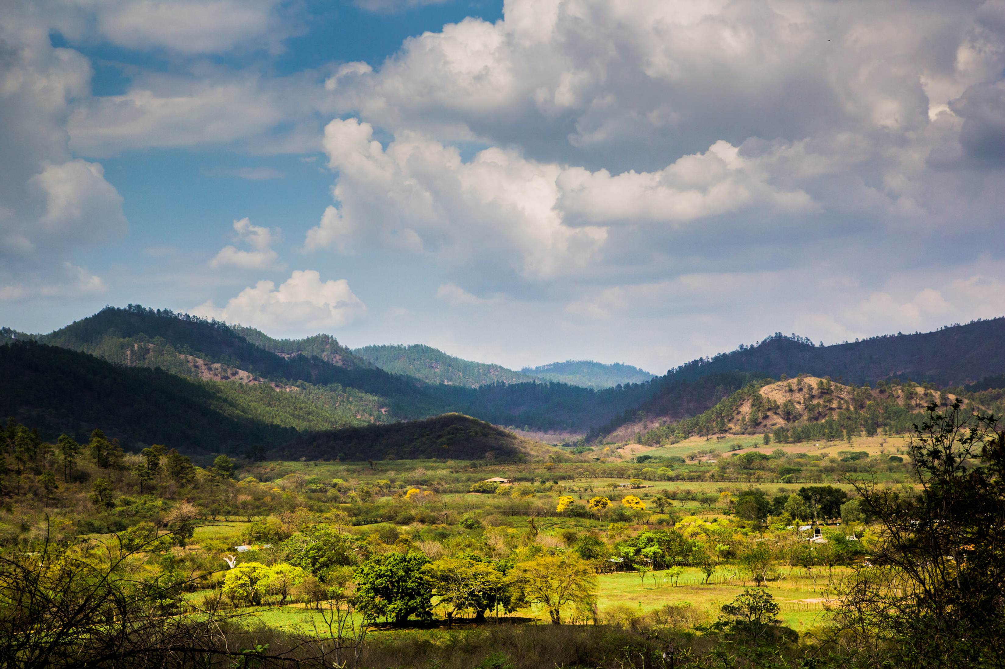 A Honduran landscape stretches out in front of the camera. Clouds cast shadows on rolling, forested hills and pastures broken up by clumps of trees.