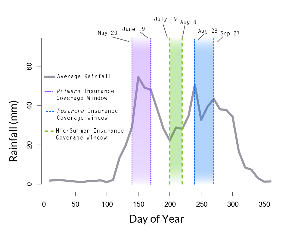"""A line graph illustrates the amount of rainfall (y-axis in millimeters) over the course of days of the year (x-axis, day of the year 0-350 marked on the axis). A purple band identifies the period from May 20 to June 19 as """"Primera Insurance Coverage Window."""" In this graph, the blue bar identifying the """"Postrera Insurance Coverage Window"""" is shown to be August 28 to September 27 and an additional green bar has been added to the graph, from July 19 to August 8, and labeled as """"Mid-Summer Insurance Coverage Window."""""""