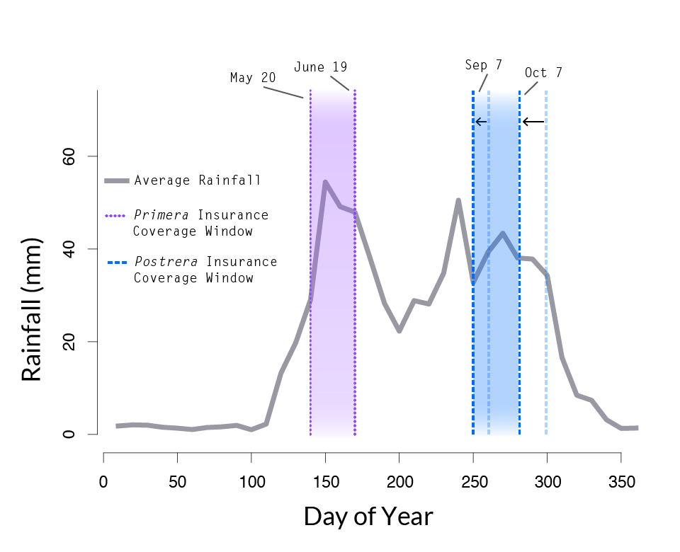 """A line graph illustrates the amount of rainfall (y-axis in millimeters) over the course of days of the year (x-axis, day of the year 0-350 marked on the axis). A purple band identifies the period from May 20 to June 19 as """"Primera Insurance Coverage Window."""" In this graph, the blue bar identifying the """"Postrera Insurance Coverage Window"""" is shown to be shifting left, from the September 17 to October 27 window to a new window from September 7 to October 7."""