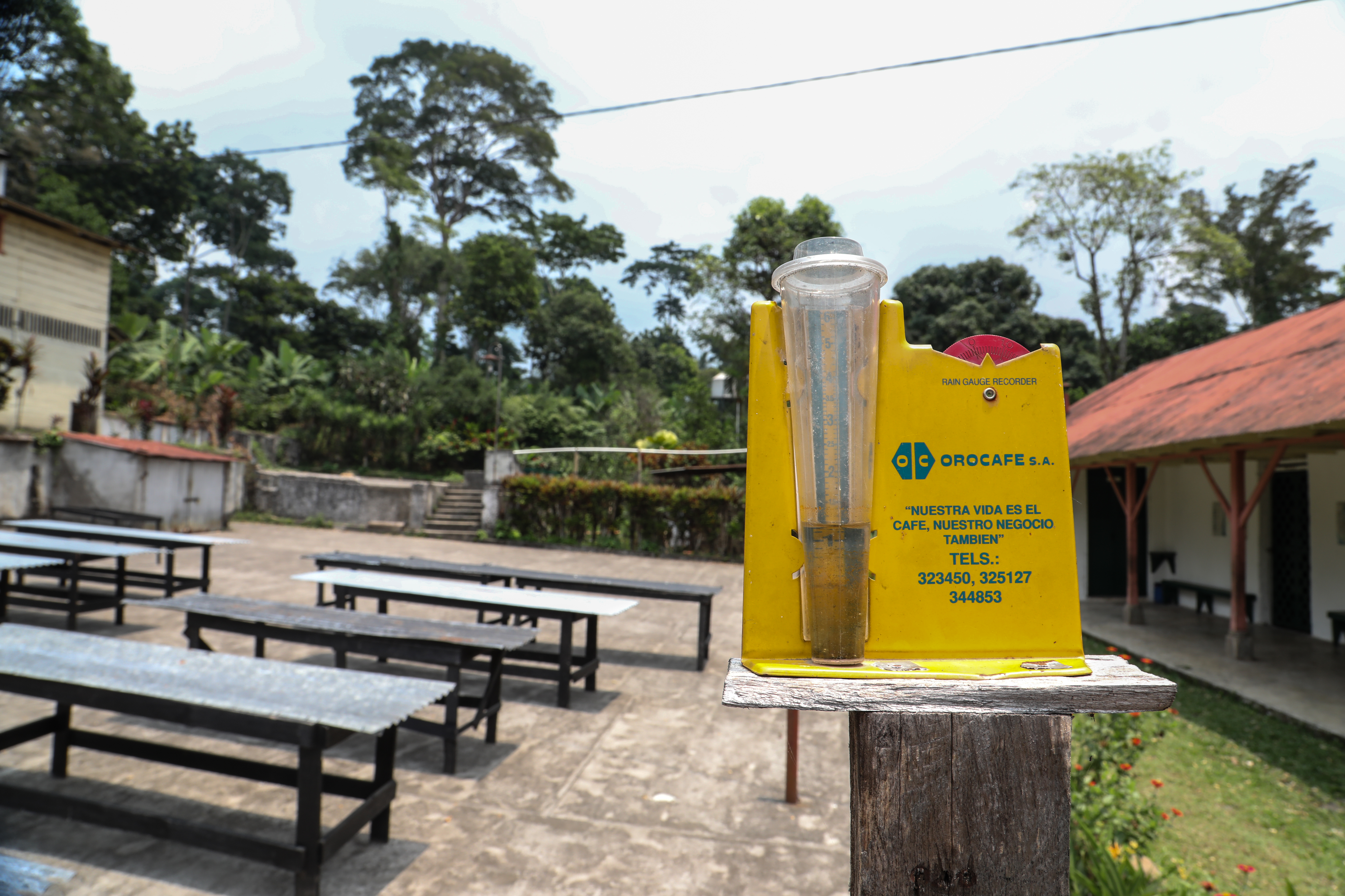 """A rain gauge at a coffee farm in Guatemala. A series of low coffee-drying tables are in the background as well as a low building with a red corrugated roof. The rain guage is backed by yellow plastic which says """"Orocafe"""" in green font. Photographer Elisabeth Gawthrop, ACToday/IRI."""